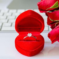 Valentine's Day 2021 Promises to Be a Romantic Sunday of Marriage Proposals
